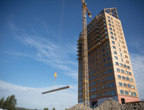 World's tallest timber structure rises up in Norway