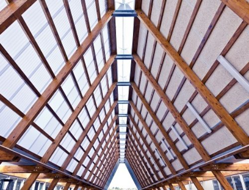 The rise and rise of timber roofs