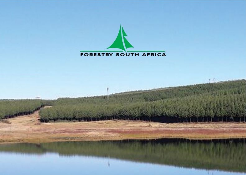 The 2019 edition of the Environmental Guidelines for Commercial Forestry Plantations in South Africa is now available. Image credit: Forestry South Africa