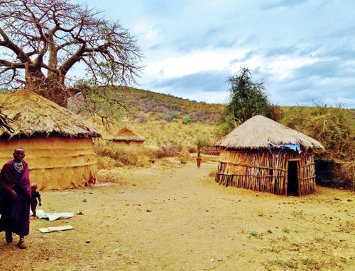 Africa's potential with timber construction