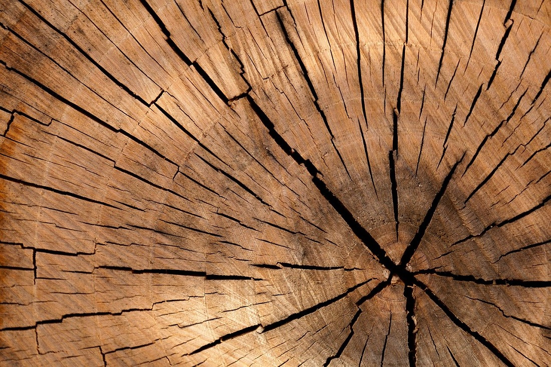 Research into wood and construction is important. Image credit: Pixabay