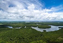 The Amazon rainforest is under siege from illegal and legal mining. Image credit: Chimu Adventures