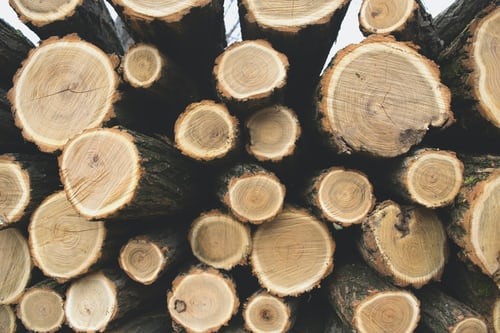 Malaysian timber sector continues operating despite travel restrictions