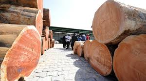 Ghana exported a total volume of 201 481cu.m of wood products during the 11 months to November 2020. Image credit: IMD Library