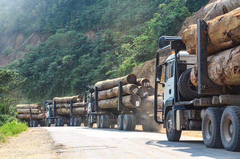 Another Covid-19 lockdown in Gabon has caused a delay in the transport of timber. Photo by jbdodane | Flickr