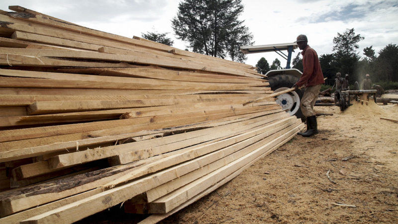 The new minimum wage for forestry workers has been set at R21.69 per hour, an increase of 16.1% over the 2020 minimum wage of R18.69 per hour. Photo by Flickr