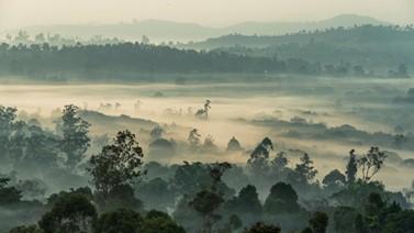 Bansoa Cameroon.Photo by Edouard Tamba | Unsplash