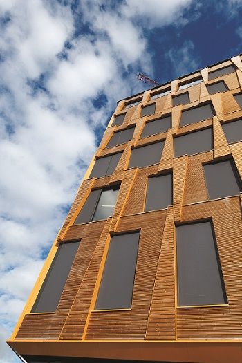 More and more multi-storey buildings around the world are being constructed with timber. Photo by Anders Vestergaard Jensen I Unsplash