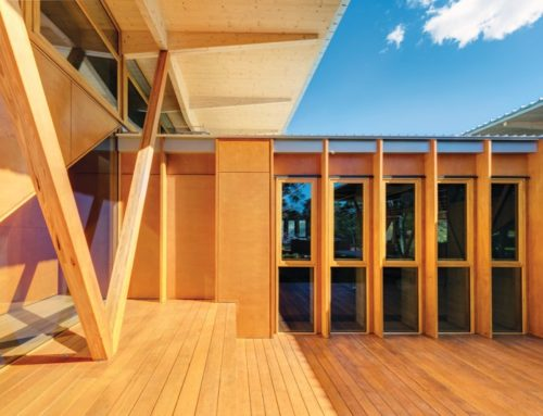 Why building with wood is better for the environment
